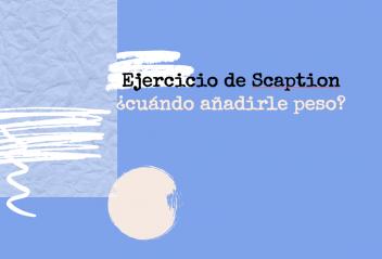 Ejercicio de Scaption ¿cuándo añadirle peso?